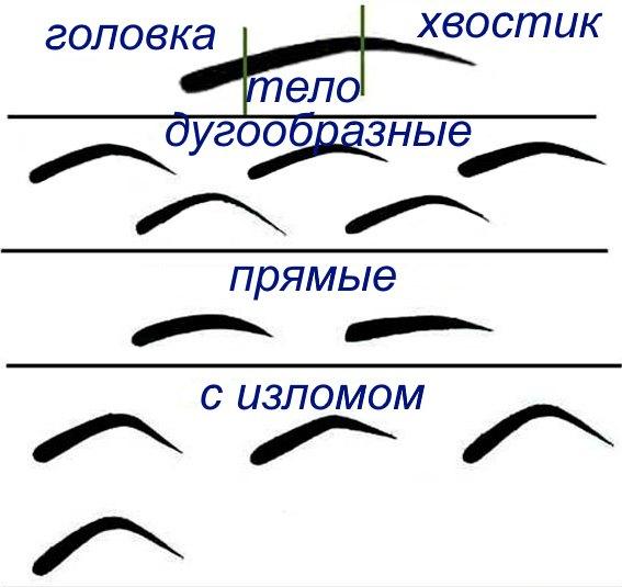 Разные формы бровей.