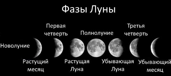 Фазы Луны.