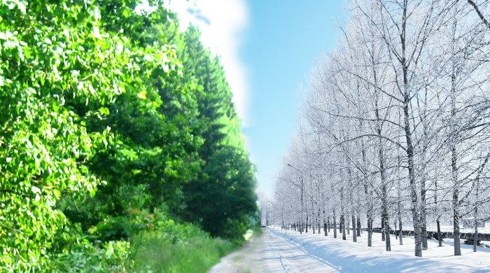Зима и лето
