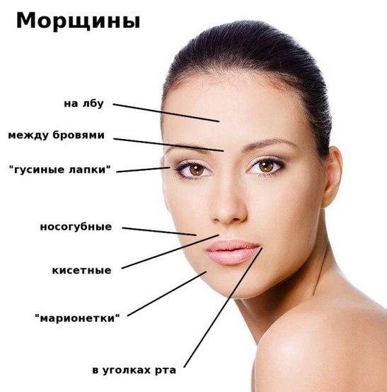 Значение морщин на лице. Расшифровка с картинками