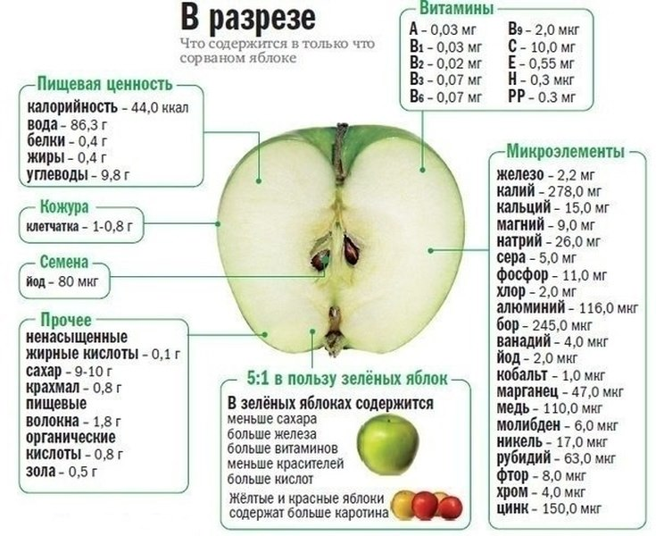 Какая польза яблок для организма женщины. Как готовить яблоки