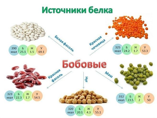 Вегетарианство меню для начинающих