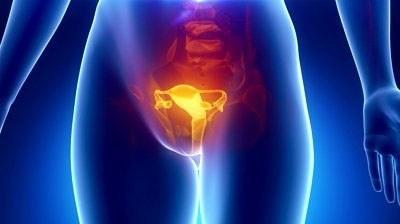 Боль в кишечнике слева внизу живота. Что может болеть