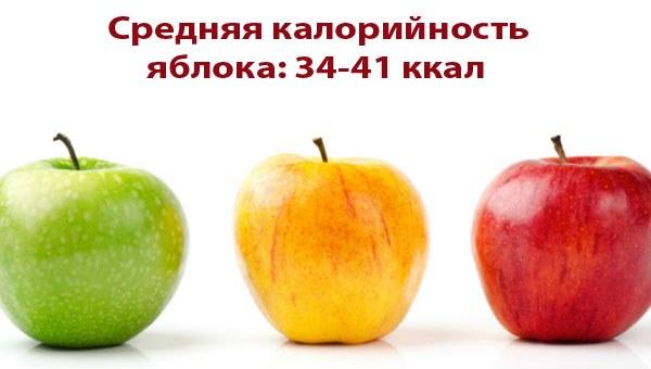 Сколько калорий в яблоке 1 шт, калорийность на 100 грамм. Яблочная диета