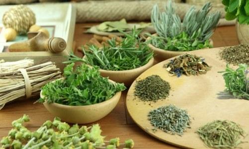 Рецепты тибетских сборов трав для очищения организма (настои трав)