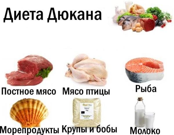 Белковая пища - это какие продукты? Белковые продукты для похудения и роста мышц