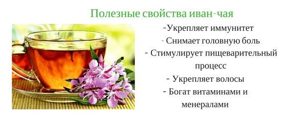 Иван чай - полезные и лечебные свойства для женщин и мужчин
