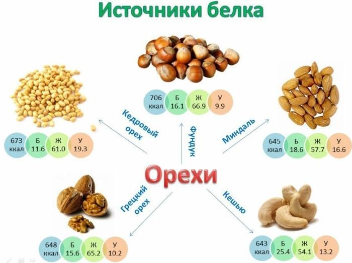 Какие продукты содержат белок в большом количестве. Список и таблица