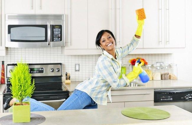 Система Флай леди. Уборка дома, задания на каждый день, журнал, книга