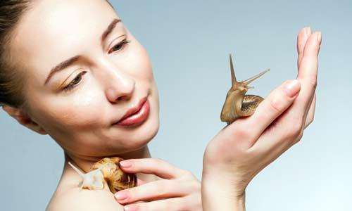 Ахатины в косметологии. Польза и вред улиток. Массаж и омоложение кожи