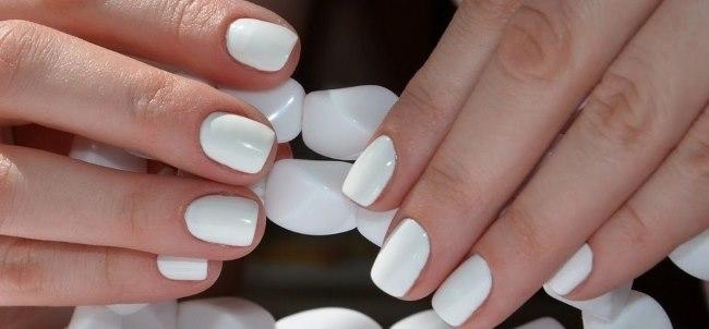Белый лак на коротких ногтях