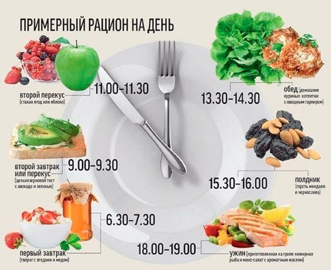 Меню для похудения на белковой диете. Список белковых продуктов