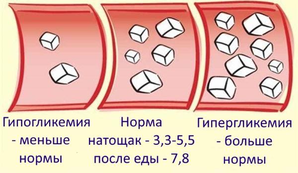 Препарат «Голубитокс». Правда или вымысел о пользе и лечении. Мнения врачей