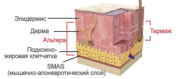 Витамин если сухая кожа thumbnail