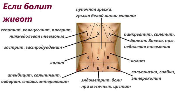 Что болит в левом боку живота острая тупая и ноющая боль