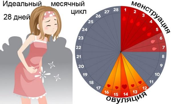 Действие антибиотиков на организм женщины в период месячных. Что важно знать