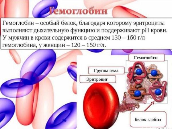 Что такое железо сывороточное в биохимическом анализе крови Справка для ребенка, оформляющегося на усыновление Аннино