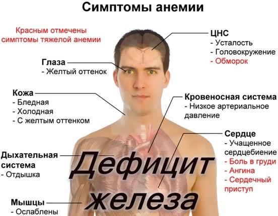 Сывороточное железо - норма для женского организма, дефицит, восполнение недостатка
