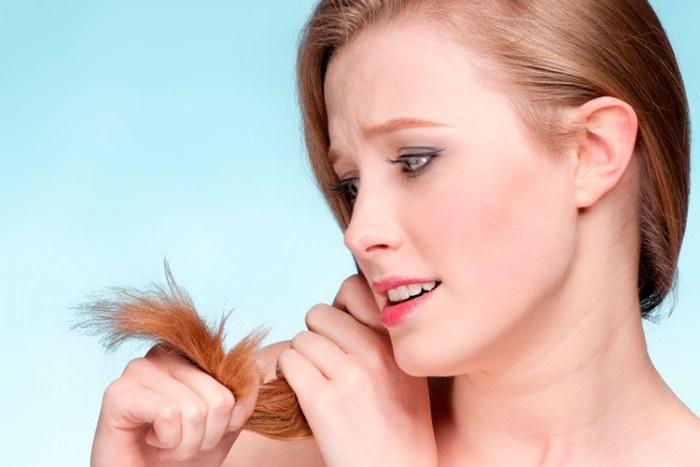 Полечить волосы в домашних условиях 488