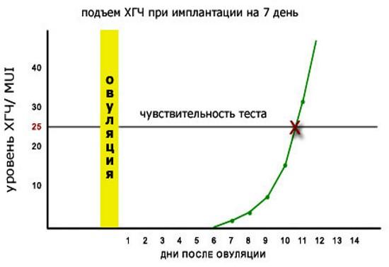 Тест на беременность - как делать, что показывает полоска, точность срока, положительный, отрицательный