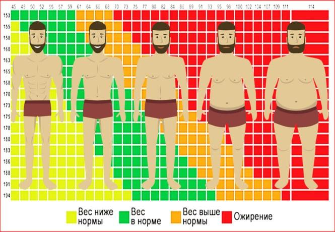 Определить индекс массы тела ребенка
