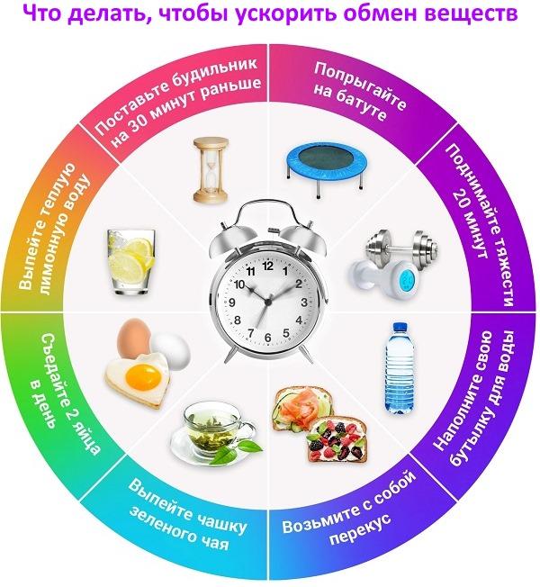 Как улучшить обмен веществ в организме, чтобы похудеть или набрать вес. Народные средства и препараты