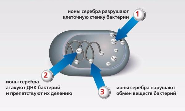 Лед для лица от морщин: польза и вред, показания и противопоказания, рецепты для ледяных кубиков
