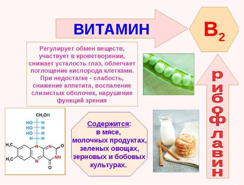 Витамины для бодрости и энергии для женщин. Список лучших, названия, цены и отзывы