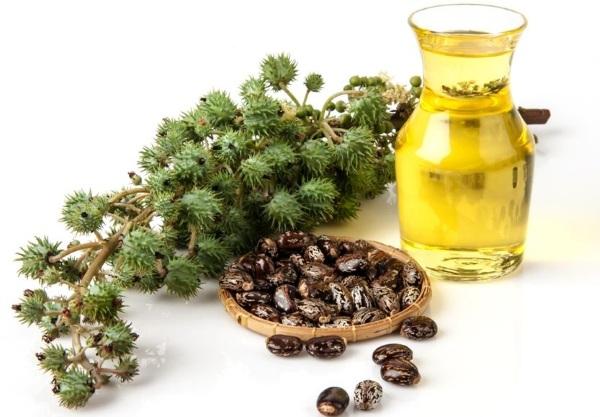 Касторовое масло для волос, ресниц и бровей. Свойства и рецепты применения