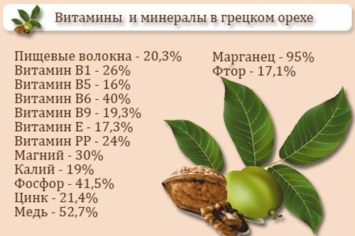 Масло грецкого ореха. Полезные свойства, применение в народной медицине, косметологии