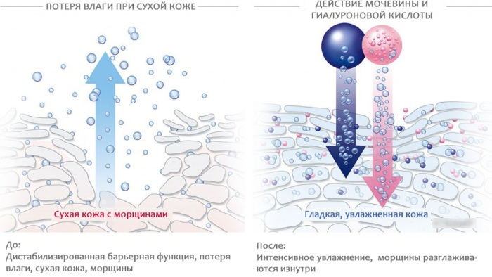 Аптечные средства от морщин вокруг глаз и лица для омоложения. Отзывы, цены