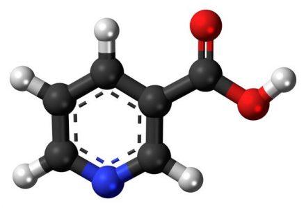 Метилпарабен Е218 (метилпарагидроксибензоат). Что это такое в косметике, лекарствах, пищевой промышленности, влияние на организм