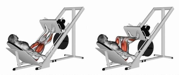 Упражнения для похудения ног и ляшек для девушек. Программа тренировок на неделю