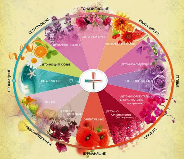 Восточные ароматы духов для женщин известных марок. Названия