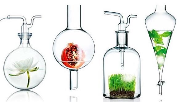 Fragrance (ароматизатор, отдушка) в косметике для волос, лица. Польза и вред