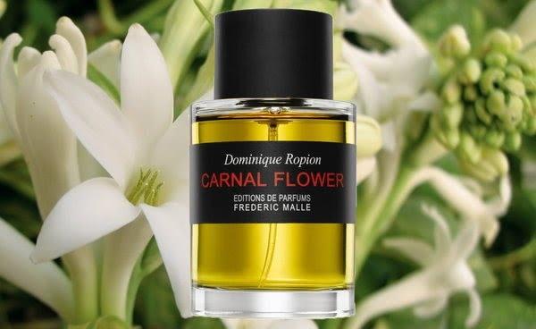 Frederic Malle (Фредерик Маль) парфюм: Портрет Леди, Талая Вода, Карнал Флауэр, Ирис Пудр. Отзывы