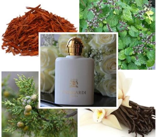 Trussardi (Труссарди) парфюм женский Донна, Роза, Май Нейм, Инсайд. Отзывы, цена